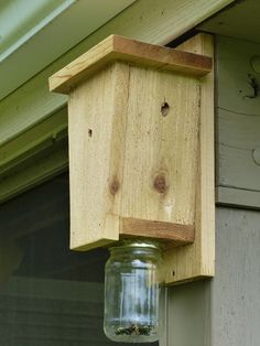 Carpenter Bee Trap YT
