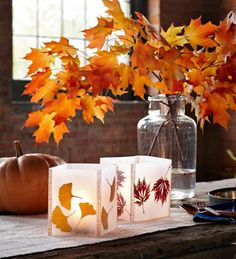 One of the most inexpensive crafts you'll make all year! Use those extra household supplies you've got laying around the house and create a beautiful fall decoration./ LEAF DESIGNS WITH WAX PAPER Leaf Crafts, Fall Crafts, Holiday Crafts, Tree Crafts, Nature Crafts, Thanksgiving Decorations, Seasonal Decor, Autumn Decorations, Thanksgiving Crafts