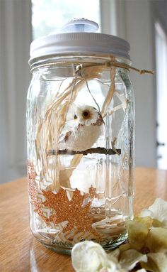 Owl in Jar | Cosmo Cricket