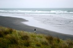 Ruapuke, NZ WILD