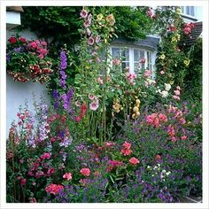 an English cottage garden, it has all kinds of colours of hollyhock, two types of geranium, carnations?, delphinium, Matthiola incana or as we say Violier, Campanula? climbing roses etc. Wonderful!