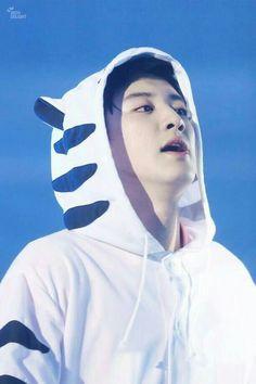 Chanyeol hyung dres animal