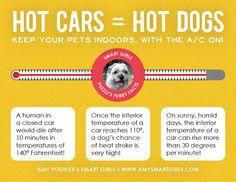 Graphics that save pet lives //  amysmartgirls.com