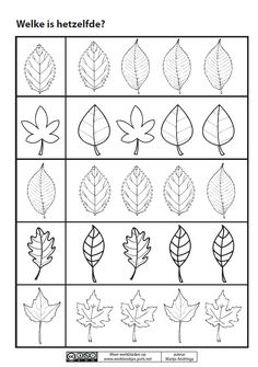 * Welk blad is hetzelfde? Autumn Activities For Kids, Fall Preschool, Preschool Activities, Pattern Worksheets For Kindergarten, Preschool Worksheets, Autumn Leaves Craft, Autumn Crafts, Autumn Leaf Color, Halloween Math