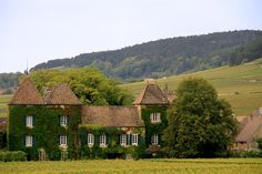 From the vine yard in the pommard, this is a French country house