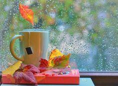 O cescuta de Ceai ne aduce soarele dupa o ploaie de toamna...  Http://livadacuceai.ro/love-and-happiness-v-126-723