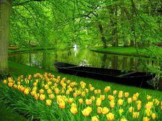 Keukenhof Gardens, Lisse, The Netherlands  https://www.facebook.com/144196109068278/photos/pb.144196109068278.-2207520000.1419025257./181000552054500/?type=3&theater