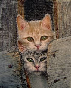 Homeless kittens by irishishka