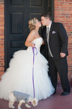 Bride and groom pose with dog on purple leash by Kelly Kirkland Photography | Two Bright Lights :: Blog