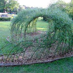 Красивейшая беседка из ивы в саду… А главное своими руками! Мастер класс | Golbis
