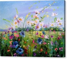 Field with flowers Canvas Print / Canvas Art by Olha Darchuk Oil Painting On Canvas, Diy Painting, Painting & Drawing, Watercolor Paintings, Canvas Art, Canvas Prints, Art Prints, Bow Art, Summer Painting