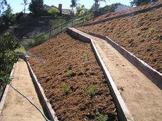 steep hillside landscaping - Google Search