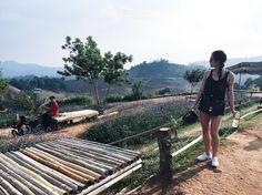 Off roading through the villages and mountains  | #latergram #chiangmai #thailand #travels #southeastasia #mountain #adventure #landscape #vsco #ridingbitch by itsjenbui http://bit.ly/AdventureAustralia