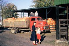 Truckload of pumpkins at Burton, OH, apple butter festival, 1953 | Flickr - Photo Sharing!