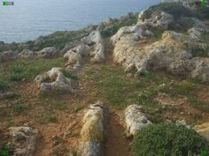 Even more stunning than Golden Bay is the Fomm Ir-Rih Bay (Ras-il-Pellegrin). You can find Maltese Cart Ruts going straight over the cliff face! One of the ancient wonders of the world and a mystery that may never be solved. http://www.cartrutsmalta.com/introdis-fomm-ir-rih-bay.html