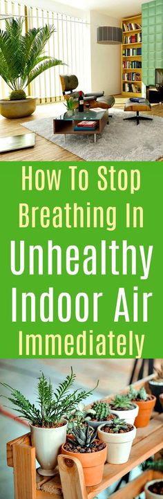 Here are simple home improvements that can prevent you and everyone living under your roof from breathing in stale indoor air. If you commit to these simple home improvements, you will improve your air quality and breathe easily from now on. #indoorairquality #home #windows #houseplants