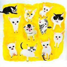 Kittens in yellow surroundings by Marie Åhfeldt, Mås Illustra. www.masillustra.se #cat #yellow #masillustra #illustration
