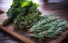 If you have an overabundance of herbs from your garden and aren't sure what to do with them, here are three ways to preserve your herbs.
