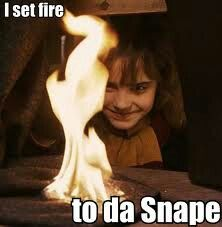 I set fire to da Snape // LOOK AT HER FACE!