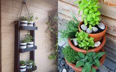 Wir ernten was wir säen. Utopia zeigt kreative Wege, wie man eigenes Gemüse auf dem Balkon, dem Fensterbrett und sogar im Keller anbauen kann.