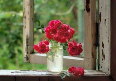 """❥‿↗⁀simply-beautiful-world thisgirlisfrommars: """" Red Roses on an Old Window Ledge """" Flowers In Jars, Flower Vases, Flower Arrangements, Beautiful Flowers, Cottage Windows, Red Cottage, Cottage Living, Simply Beautiful, Beautiful World"""