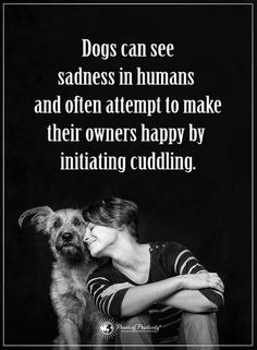 Quotes Dogs can sense your happiness and sadness, and they try their best to cheer you up.
