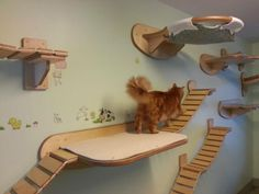 This Guy Makes The Most Awesome Feline Jungle Gym We've Ever Seen