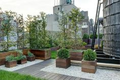 Anderson Cooper's New York rooftop garden. You can see one of New York's iconic . - Anderson Cooper's New York rooftop garden. You can see one of New York's iconic water towers to - Diy Pergola, Pergola Plans, Pergola Kits, Rooftop Terrace, Terrace Garden, Garden Water, Penthouse Garden, New York Rooftop, Garden Ideas To Make