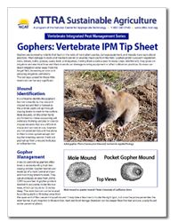 Have gopher problems? Learn how to manage them with IPM techniques in this new tip sheet from ATTRA. Agriculture Information, Appropriate Technology, Crop Rotation, New Tricks, Homeschooling, Homeschool