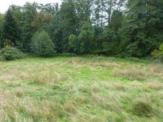 Grundstück kaufen Kirchlengern: Grundstücke kaufen in Herford (Kreis) - Kirchlengern und Umgebung bei Immobilien Scout24