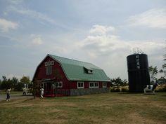 Machimura ranch,Nopporo,Hokkaido
