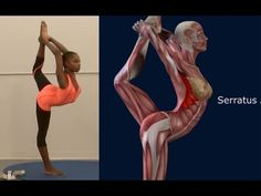 How To Lord of The Dance Pose, Natarajasana, Yoga Pose, Muscle Anatomy Routine EasyFlexibility - YouTube