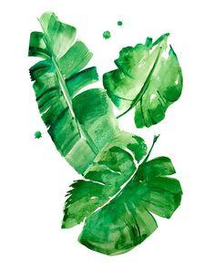 Resultado de imagen de watercolor banana leaves