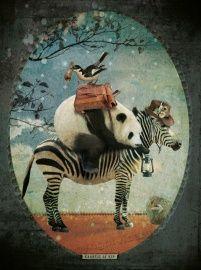 Panda on Zebra - Kaartje of Kip poster met gedicht