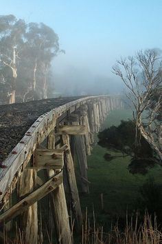 Meeniyan trestle bridge, on the south Gippsland trail, Victoria, Australia Outback Australia, Australia Travel, Visit Australia, Foto Nature, Old Bridges, Victoria Australia, Covered Bridges, Wonders Of The World, Awesome