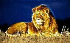 Fractals in Nature Animals | Tag : animal fractal wallpaper collections, lion fractal, wolf fractal ...