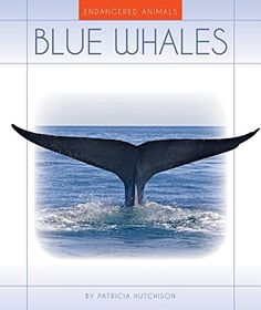 Blue Whales (Endangered Animals) by Patricia Hutchison https://www.amazon.com/dp/1631439669/ref=cm_sw_r_pi_dp_x_ZBBuybG1M5K2G