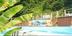 Solarium, bananier et farniente au bord de la piscine du Camping Flower Soleil du Pibeste