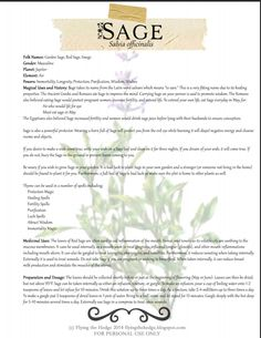 Magical and medicinal uses of Sage