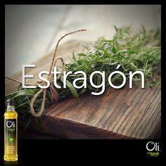 Originario de Rusia y el oeste de Asia, el estragón es una especia reconocida por su aroma picante. Fresco, sirve como complemento para ensaladas y como aderezo cuando está seca. ¿Lo has utilizado en algún platillo?
