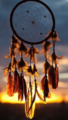 """"""" """"It's a dream catcher."""" """"You mean THAT catches your dreams?"""" """"No, you dummy. Well, would you like a real dream catcher? Dreamcatcher Wallpaper, Boho Dreamcatcher, Cute Wallpapers, Wallpaper Backgrounds, Iphone Wallpaper, Dream Catcher Wallpaper Iphone, Winter Wallpapers, Sunset Wallpaper, Catcher"""