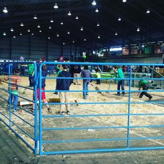 4H Fun Day is beginning in the arena in the Farm Exhibits! Bring the kiddos and get cozy inside the barn. #farm #barn #farmanimals #alaskastatefair #alaska