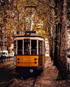 If you want to experience Europe, you need to travel to Italy. No other country on earth offers the depth, breadth, and scope of Italy. European Travel Tips, Italy Travel Tips, European Vacation, Italy Vacation, Milan Italy, Rome Italy, Student Travel, Italy Holidays, Italian Language