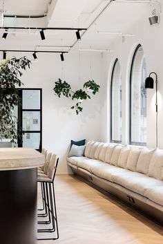 Maximus approached Siren to design their new Melbourne office within a character- filled building in the heart of the CBD. Built In Bar, Built In Seating, Hygee Home, Siren Design, Floral Room, Cafe Interior Design, Arched Windows, Tiny Spaces, Minimalist Interior
