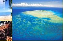 Diving Cairns and the Great Barrier Reef