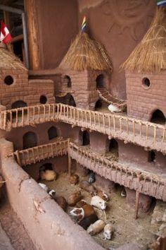 es un dormitorio por los hamsters                                                                                                                                                     Más