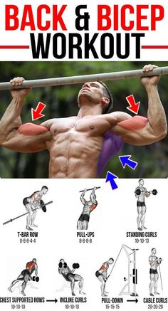Create a sculpted back and build your biceps with this amazing workout. This article is going to take you through one of many beneficial back and biceps workouts. This muscle building workout Weight Training Workouts, Gym Workout Tips, Fitness Workouts, Fun Workouts, Best Back Workouts, Upper Body Workouts, Back And Bicep Workout, Back And Biceps, Biceps Workout
