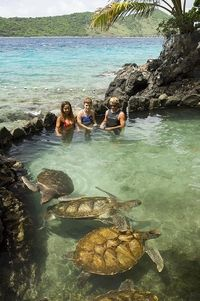 St Thomas Shore Excursion: Coral World Ocean Park General Admission Ticket #caribbeancruises #uvi #stthomas