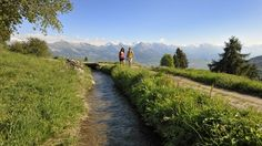 The Irrigation Channels of Nendaz : The Historic Water Trail - Switzerland Tourism Switzerland Tourism, Irrigation, Hiking Trails, Paths, Country Roads, Mountains, Travel, Barefoot, Summer