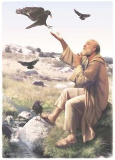 """ELIJAH had seen ravens carrying food to him twice a day while he lived in hiding. """"And it must occur that from the torrent valley you should drink, and the ravens I shall certainly command to supply you food there. Religious Pictures, Bible Pictures, Religious Art, Lds Art, Bible Art, Bible Quotes, Religion, Bible Illustrations, Christian Pictures"""